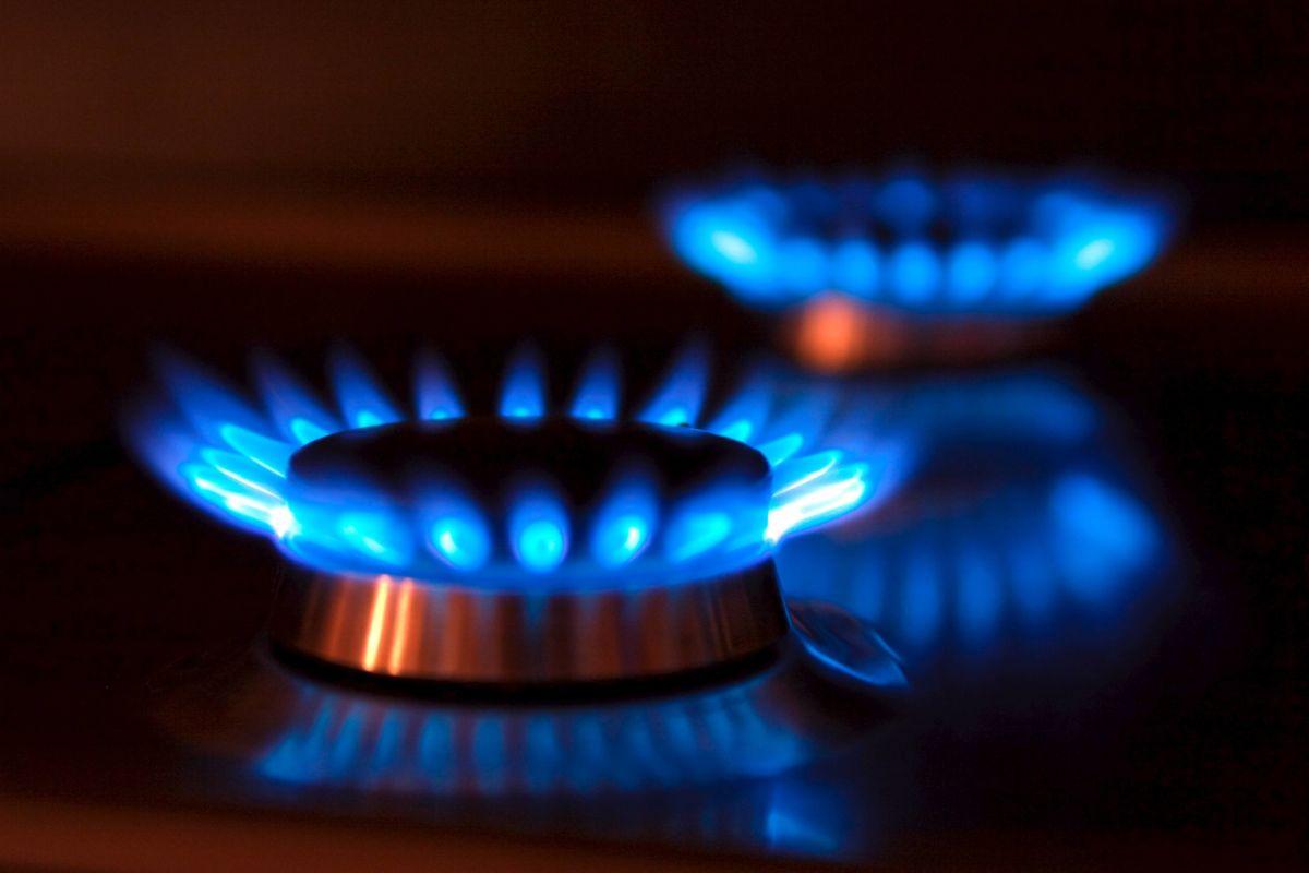 Resultado de imagen para hornallas de gas natural