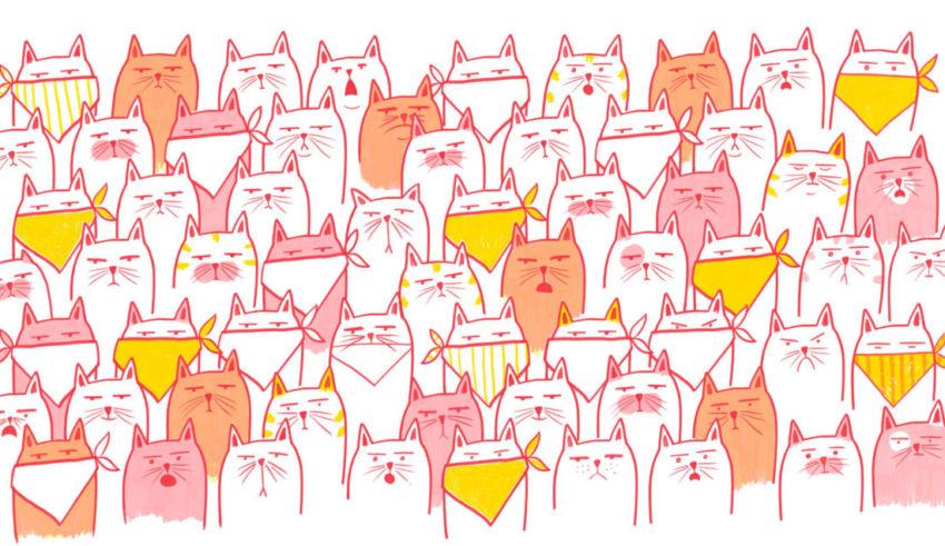 """Dibujo de Josefina Preumayr para el libro """"Gato enojado no caza ratones"""" de Laura Vilche"""