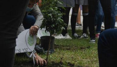 Escuela Rivadavia 432 educación